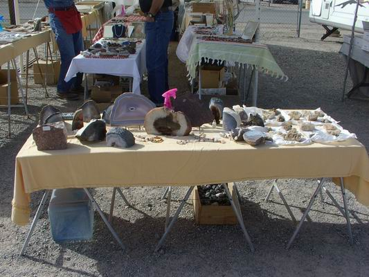 Beautiful Petrified Wood for Sale at the POWWOW